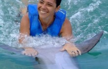 Dolphin Swim Tour at Dolphin Cove Ocho Rios