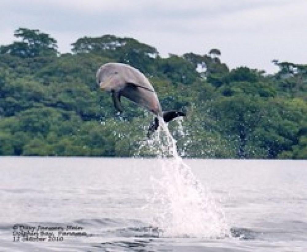 San Cristobal Village, Sheppard Island, Rana Azul & Dolphin Bay
