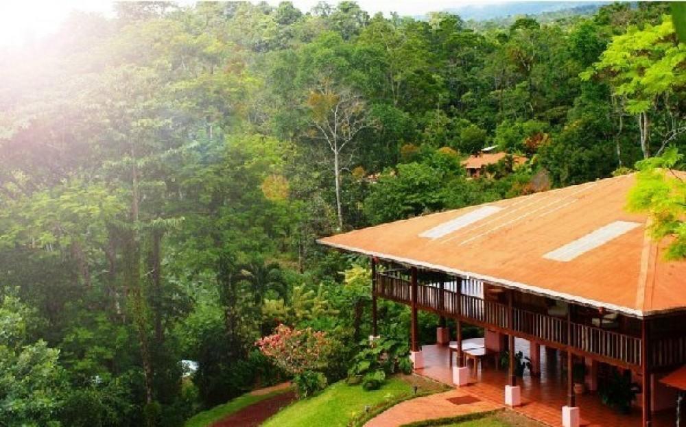 Rainforest Mysteries Guided Tour Finca Luna Nueva