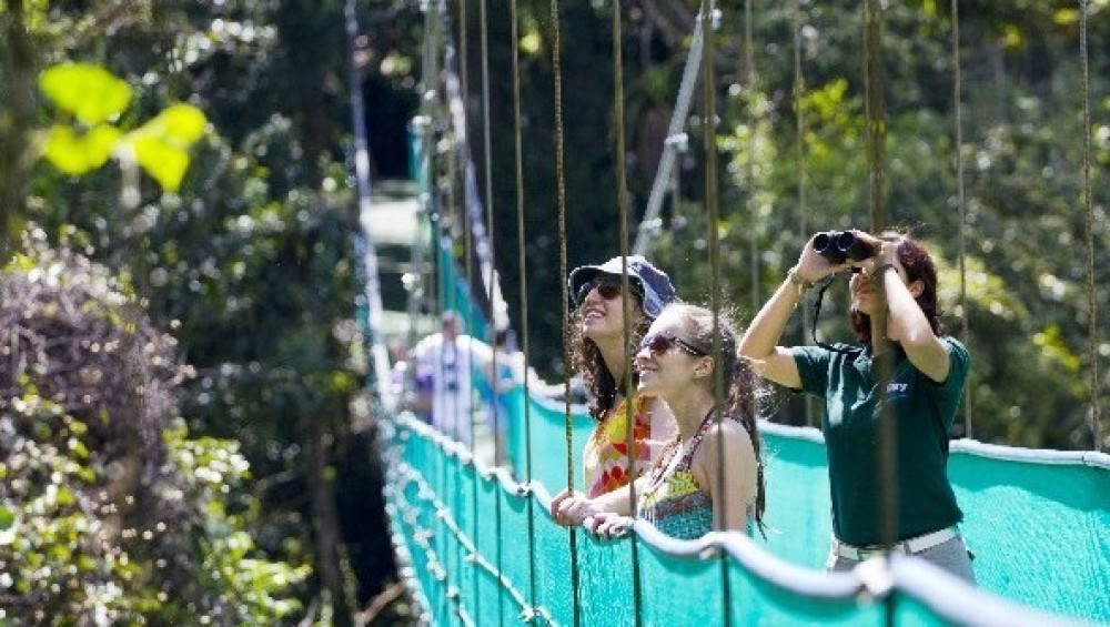Sky Adventures Arenal Hanging Bridges with Guide