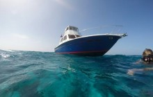 Glover's Reef: Snorkeling