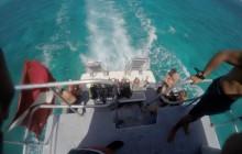 Shark Hole: 3 Dives