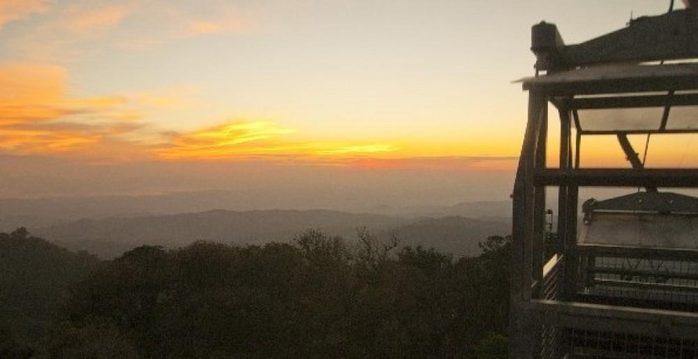 Monteverde One-Day Tour From Arenal: Hanging Bridges or Ziplining