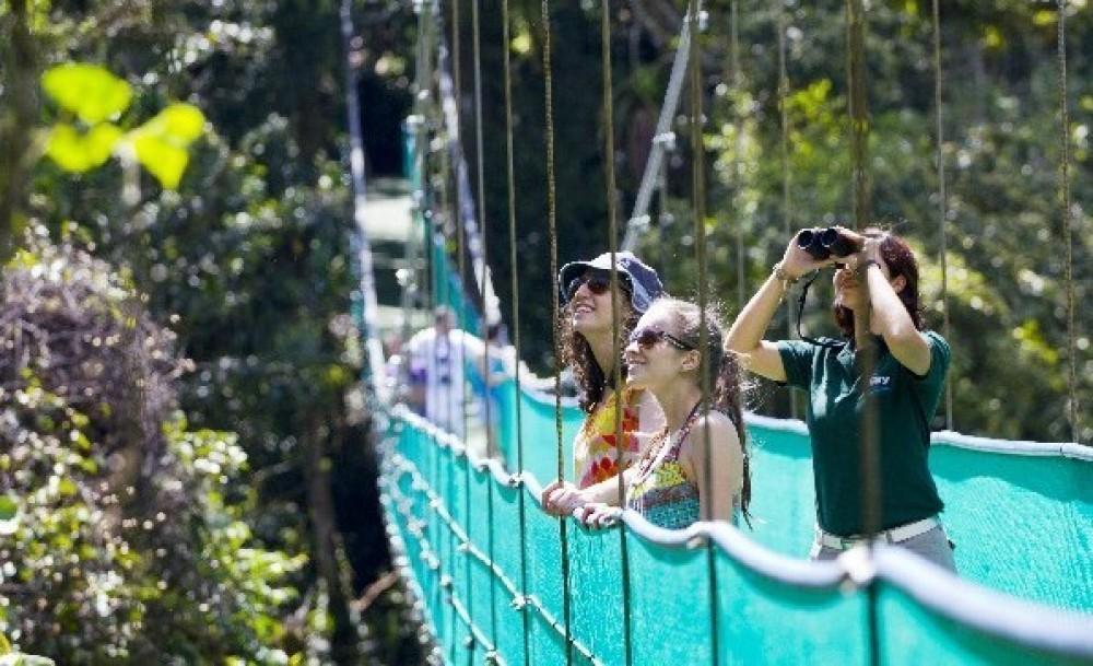 Sky Adventures Zipline & Arenal Hanging Bridges