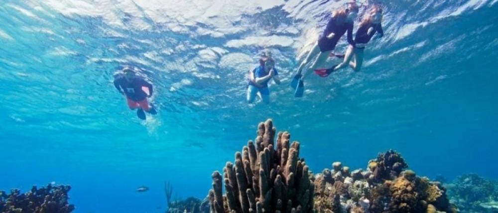 Off-Shore Snorkel Tour & Beach Escape