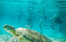 Coral Gardens Belize