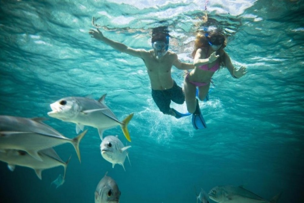 Caye Caulker Alternative Half day Tour (North Area/South Area)