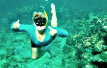 Mangrove Tunnels & Snorkel Adventure