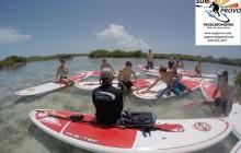 Mangrove Island Eco Tour