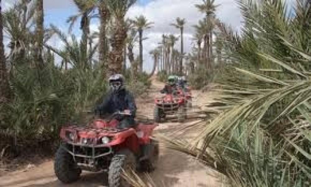 Camel Ride & Quad Bike in Marrakech Palmeraie