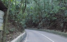 Seville Heritage and Fern Gully Heritage Tour from Falmouth