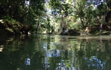Private Tour: Blue Hole & Fern Gully from Falmouth