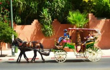 Horse Ride Carriage In Marrakesh