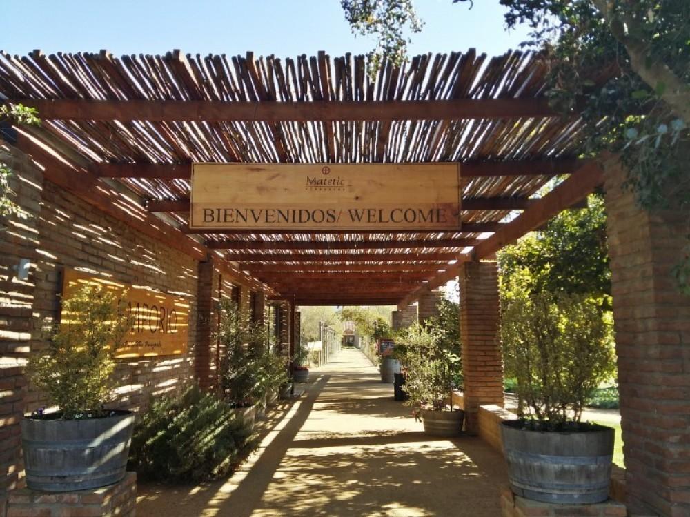 Matetic Vineyard & Outdoor Adventure