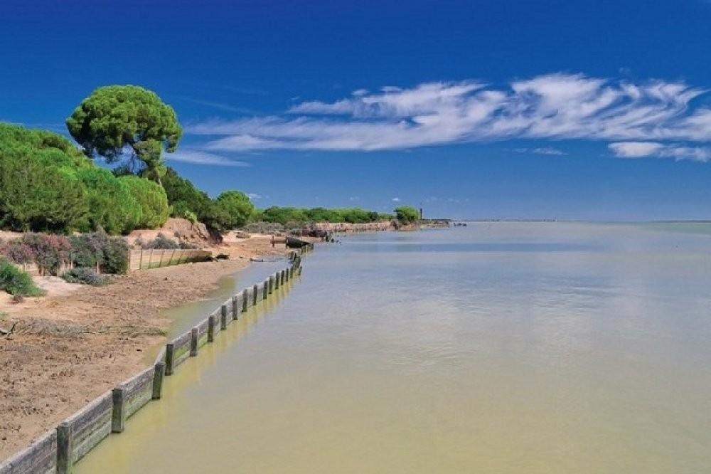 Doñana Tour