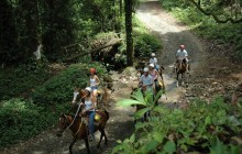 Horseback Riding Tour