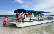 Sunset Dolphin Cruise Fort Myers Beach Tour