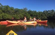 Kayak Eco Tour on Single Kayaks