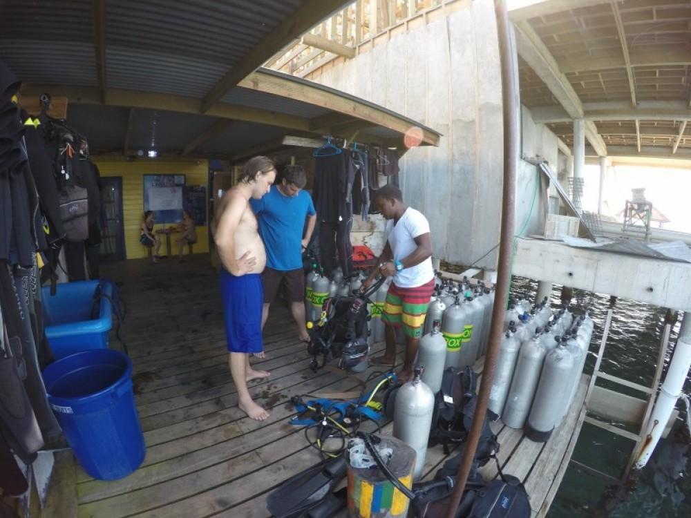 Discover Scuba Diving 1 Tank