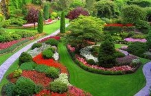 Luxury Private City Tour of Victoria and the Butchart Gardens