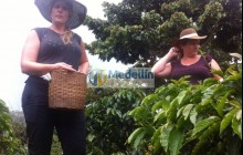 Private Coffee Tour To Jardin