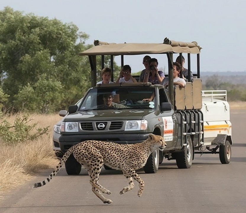 how to get from johannesburg to kruger national park