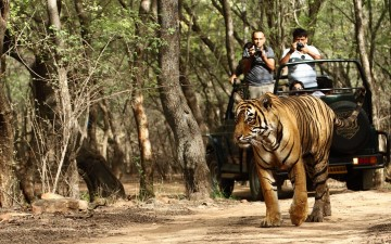 A picture of Private 7 Night Tour of Agra & Jaipur from Delhi + Ranthambore