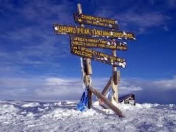 A picture of 8 Days Mount Kilimanjaro trekking (Lemosho route)