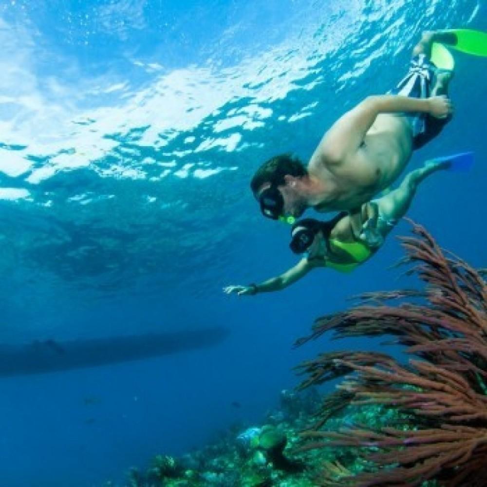 Emerald Reef Snorkelling