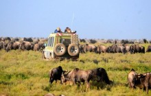 2 Days safari in Lake Manyara & Ngorongoro