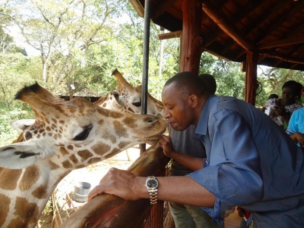 David Sheldrick Elephant Orphanage & Giraffe Center