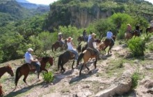 Half Day Horseback Riding Excursion