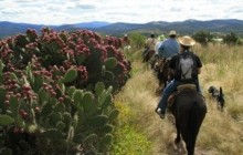 Overnight Horseback Riding Excursion