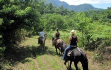 Horseback Riding - Cangrejal Valley (Half day)