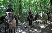 Omega Tours Adventure Company & Eco Jungle Lodge
