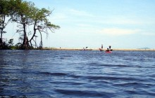 Kayaking & Canoeing - Cacao Lagoon (Full day)