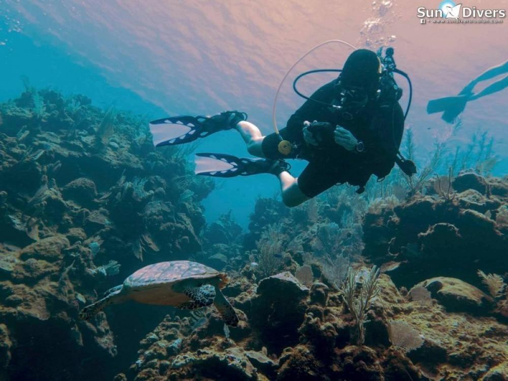 Adventure Dive