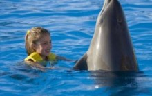 Dolphin Swim Adventure in Isla Mujeres