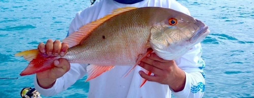 Nassau Fishing Tour