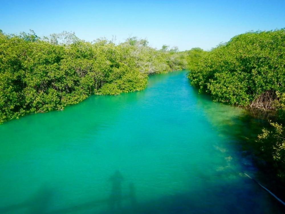 Sian Ka'an Biosphere + Mayan Ruins