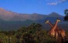 Mount Meru (tanzania)