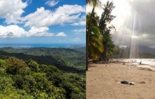 Half Day Rainforest Tour & Luquillo Beach