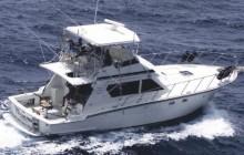 1/2 Day Deep Sea Fishing Charter