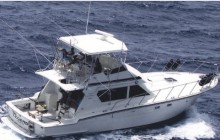 Full Day Deep Sea Fishing Charter
