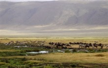 2 Days safari in Tarangire and Ngorongoro