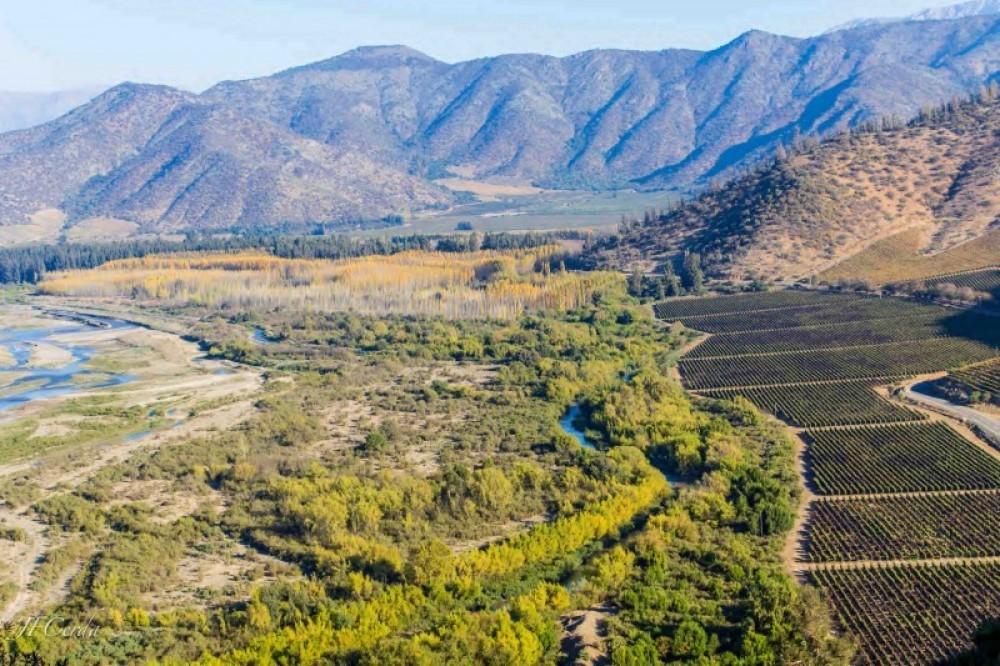Isla de Maipo wine lovers premium tour