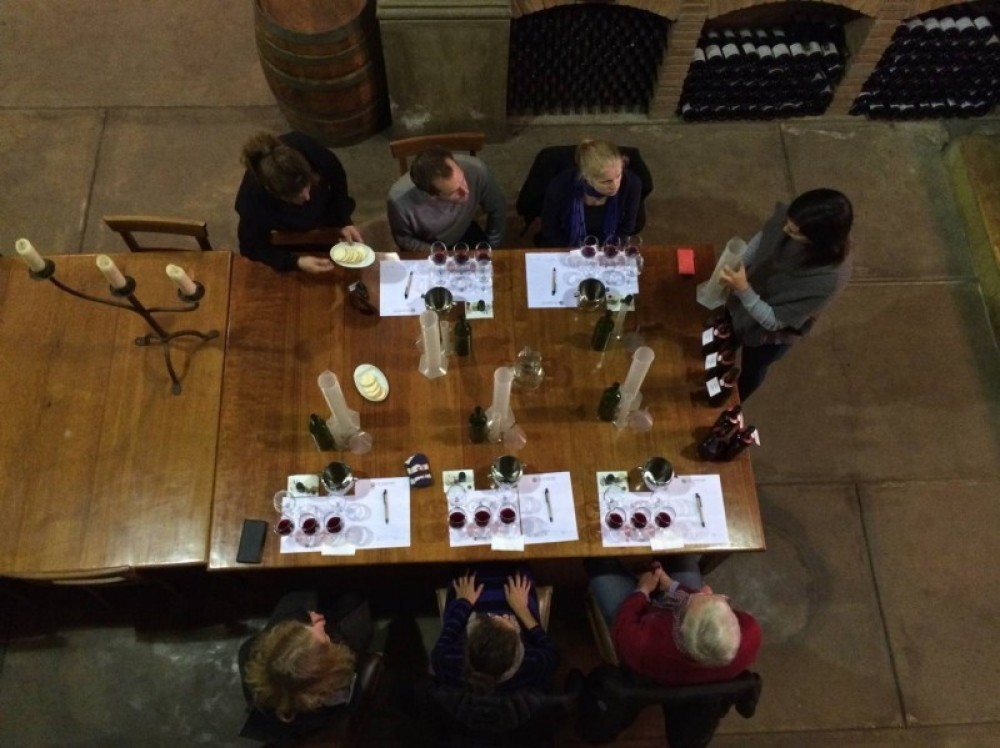 Tour my wine. Be a wine maker for a day!