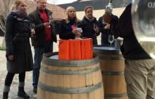 Half day tour Concha y Toro winery
