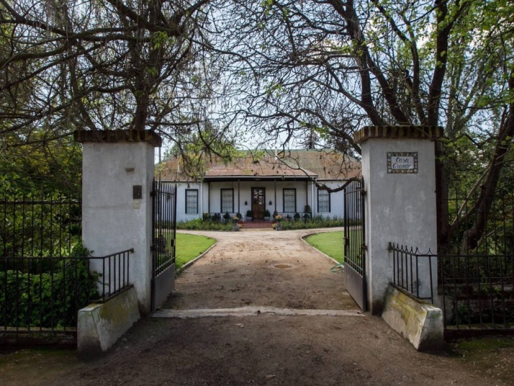 Culture and wine in Maipo Valley