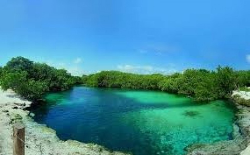 1 Dive In The Cenote